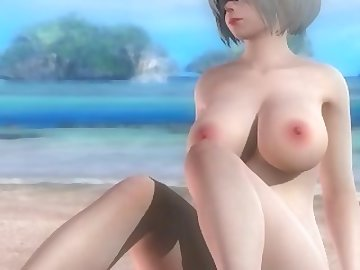Dead or Alive Hentai, hentai, cartoon, 60fps, anime, nier, automata, 2b, dead or alive
