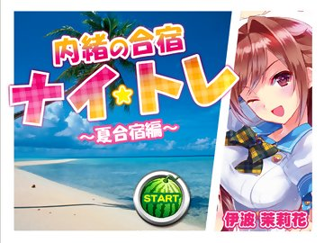 swf, flash game, funny games, big boobs, japanese, hentai, bikini